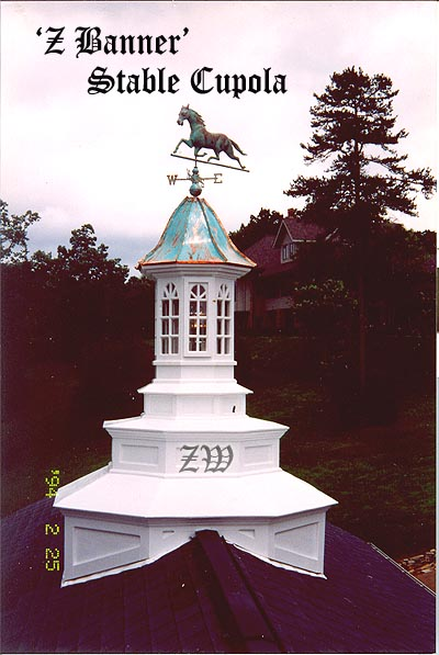 Cupolas cupola cupola roofs copper topper equisterian for Pictures of houses with cupolas